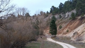 Entrada por la senda del castro